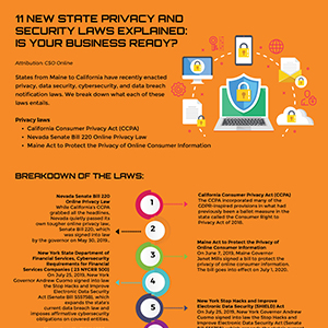 11 new state privacy and security laws explained: Is your business ready?