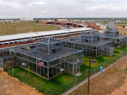 The Alamogordo Primate Facility at Holloman Air Force Base, N.M., is shown in this undated handout photo provided by the National Institutes of Health. The agency's decision to move 186 chimpanzees to Texas is pitting government officials and scientists against a coalition of New Mexico elected officials and animal rights advocates. (AP Photo/Alamogordo Primate Facility) NO SALES