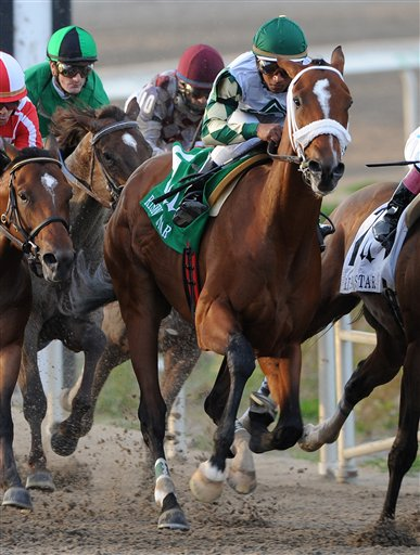 Mucho Macho Man, foreground center, with Rajiv Maragh aboard, turns for home at the top of the stretch on its way to winning the Risen Star Stakes (Gr II) horse race at the Fair Grounds Race Course in New Orleans, La., Saturday, Feb. 19, 2011. (AP Photo/Alexander Barkoff)
