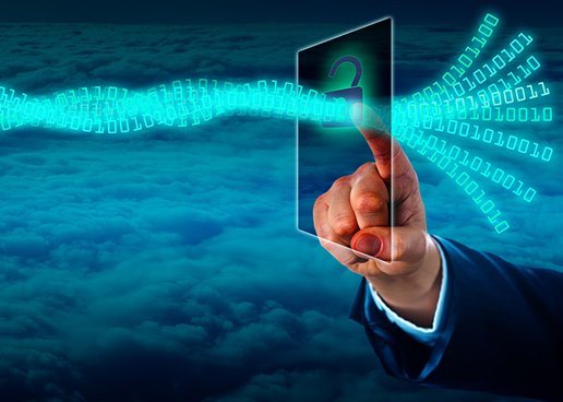 OneAccess Introduces Virtualization Solutions